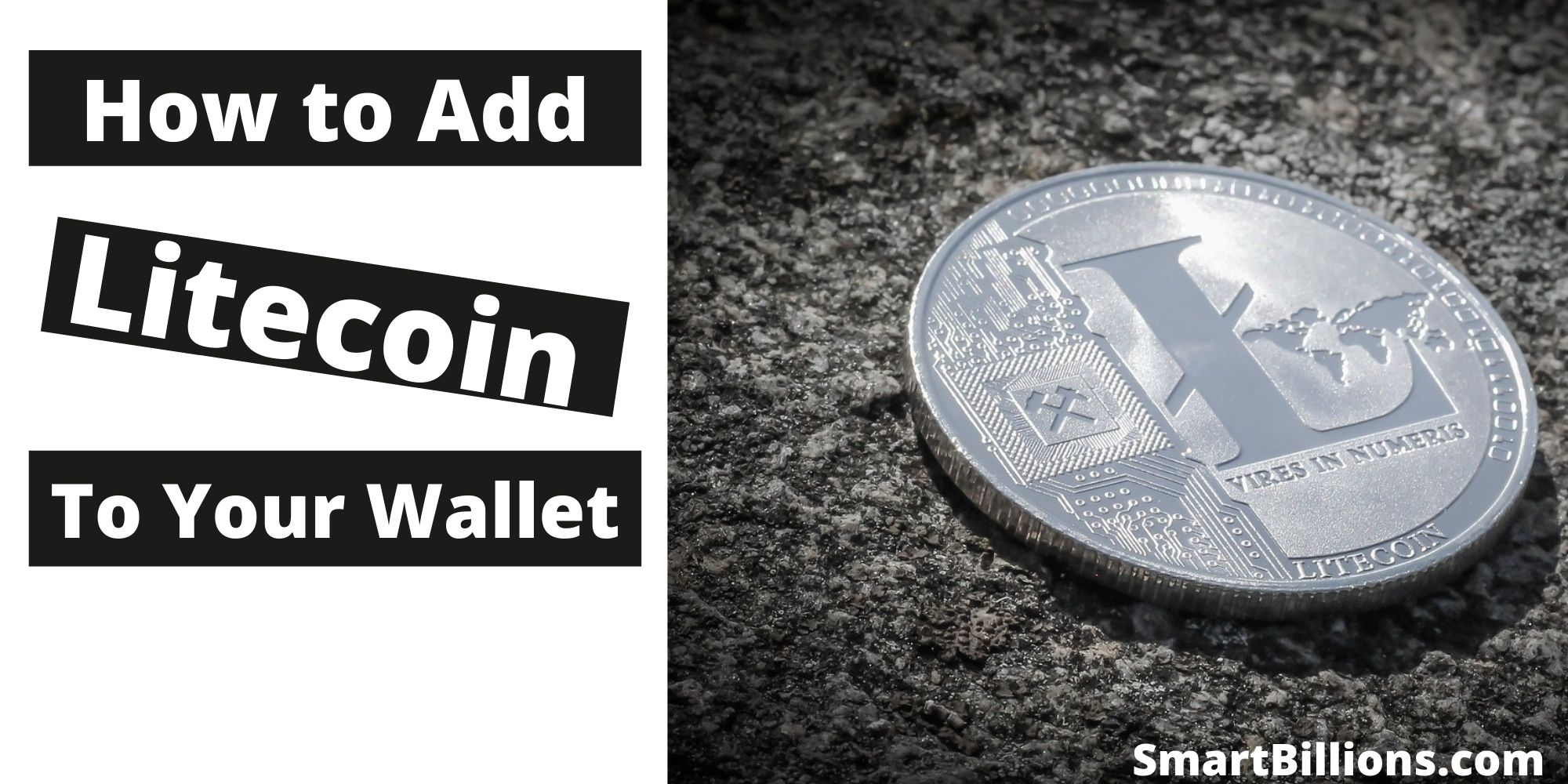 how to add litecoin to your wallet