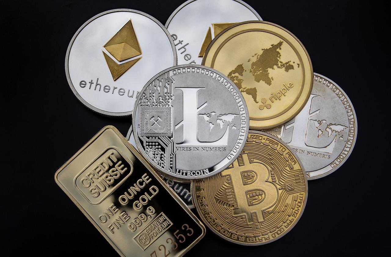 stargazer wallet coins supported
